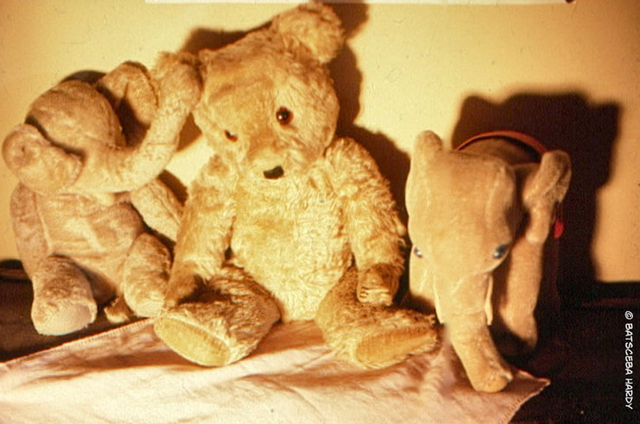 my_teddy_bear